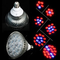 E27 LED Grow Light 15W 21W 27W 36W 45W 54W Red&Blue Indoor Hydroponics Plant Grow Light Superior Yield Higher Quality Flowers