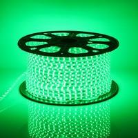 Màu xanh lá cây 220 V LED Strip Nhạt 20-100 M 60 LEDs/meter Sáng Linh Hoạt Sáng 5050 SMD LED Ngoài Trời Garden Trang Chủ Strip Rope Ánh Sáng