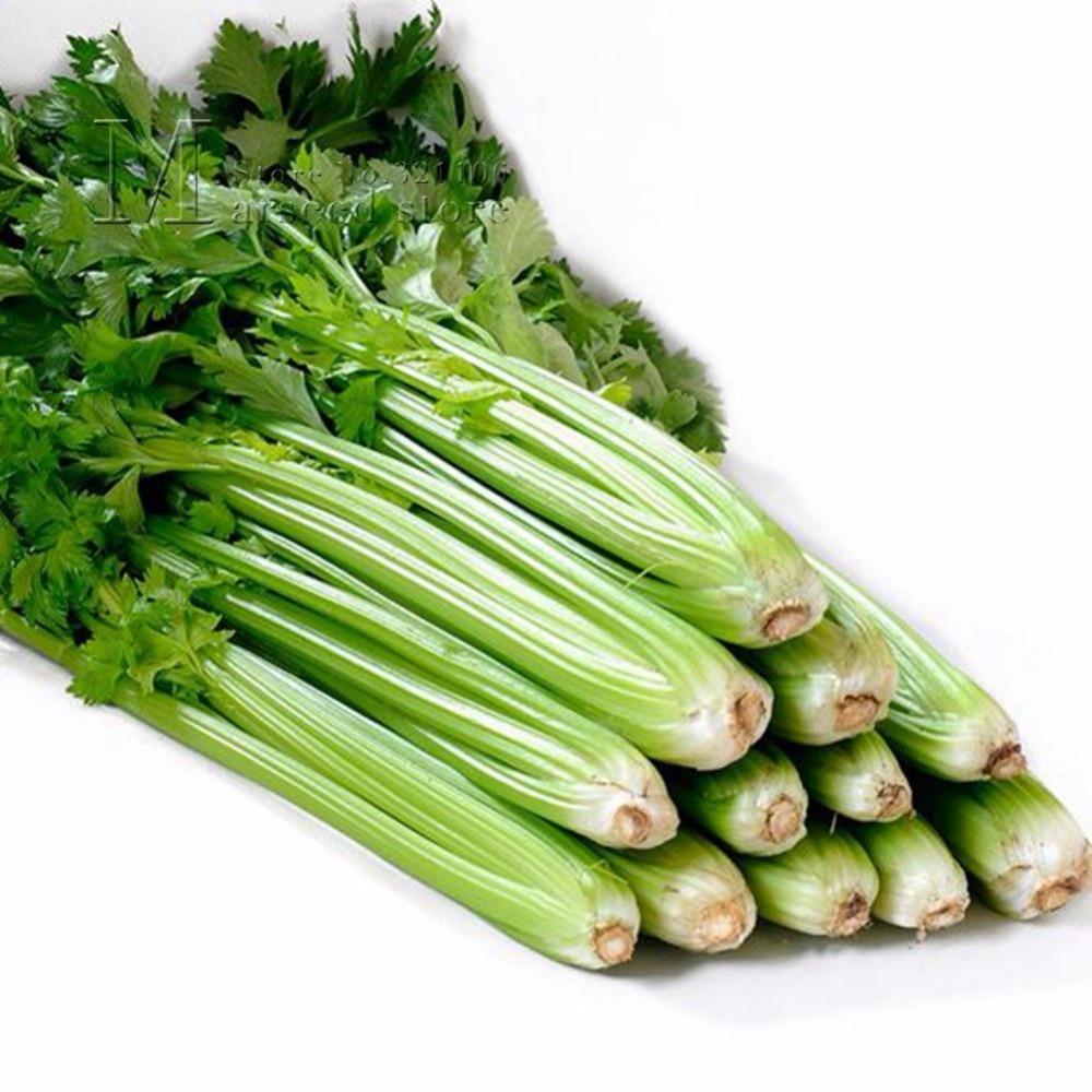 Kitchen Garden Seeds Popular Kitchen Gardening Buy Cheap Kitchen Gardening Lots From