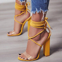 New Heel Sandals Women Lace up Transparent Shoes Summer Ankle Strap High Heels Woman Thick heels Shoes