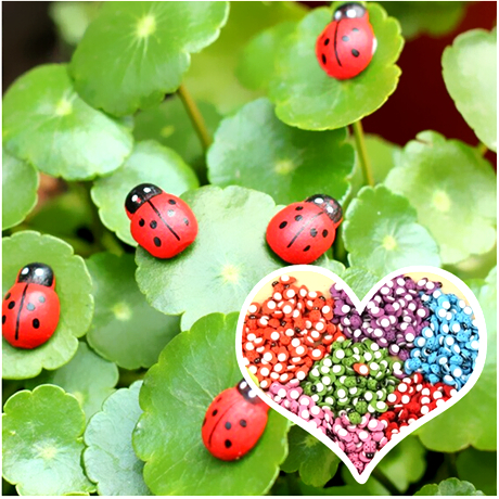 Beau 100PCS/Bonsai/terraium Decoration/small Beetle/small Ladybug/garden  Gnome/meat Combination Decoration/flower Pot / In Figurines U0026 Miniatures  From Home ...
