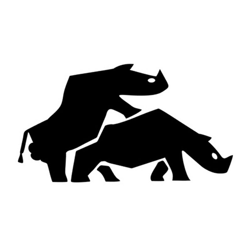 2 who are the suppliers of rhino and what was the average selling price of a rhino 2 who are the suppliers of rhino and what was the average selling price of a rhino 3 what is different about selling to a safari company and a hunting company 3.