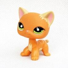 rare font b pet b font shop lps toys standing littlest orange stripe cat green eyes