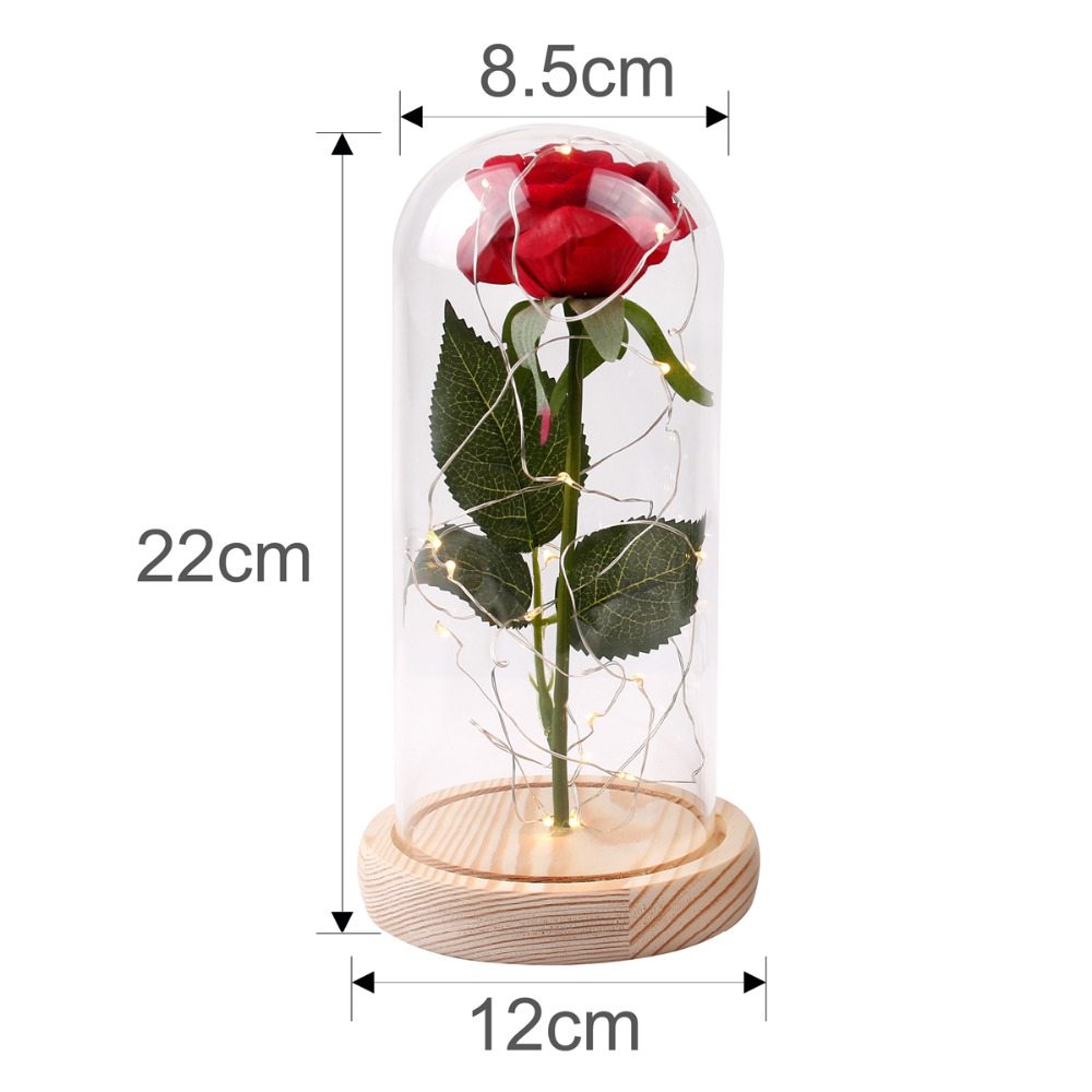 Qifu Valentines Day Led Red Rose Flower In Glass Happy Birthday