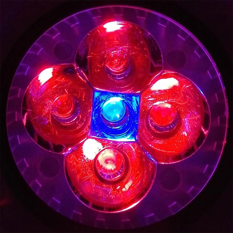 Toxum fidanları üçün tam spektral E27 GU10 E14 LED böyümə - Professional işıqlandırma məhsulları - Fotoqrafiya 2