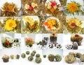 [Grandeza] 120 unids 20 tipos de china blooming flower tea 100% hecho a mano artístico de blossom flower tea bolas individuales envase al vacío