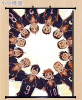 Haikyuu!! Shoyo Hinata Shonen Home Decor Poster Wall Scroll Anime Janpanese XE04