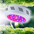 Latest Fitolampa UFO 300W Double Chips LED Grow Light  Full Spectrum 410-730nm LED Lamp For Indoor Medical Plants and Flowering