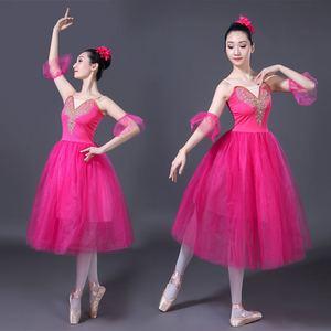 Image 5 - Adult Romantic Ballet Tutu Rehearsal Practice Skirt Swan Costume for Women Long Tulle Dress White pink blue color Ballet Wear