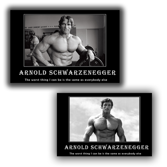 Arnold Schwarzenegger Fitness GYM Motivational Quotes Wall Decor Poster Frame Posters And Print Silk