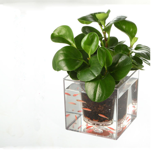 Modern Style Creative Clear Tube Plant Pot Flower Pot Decorative