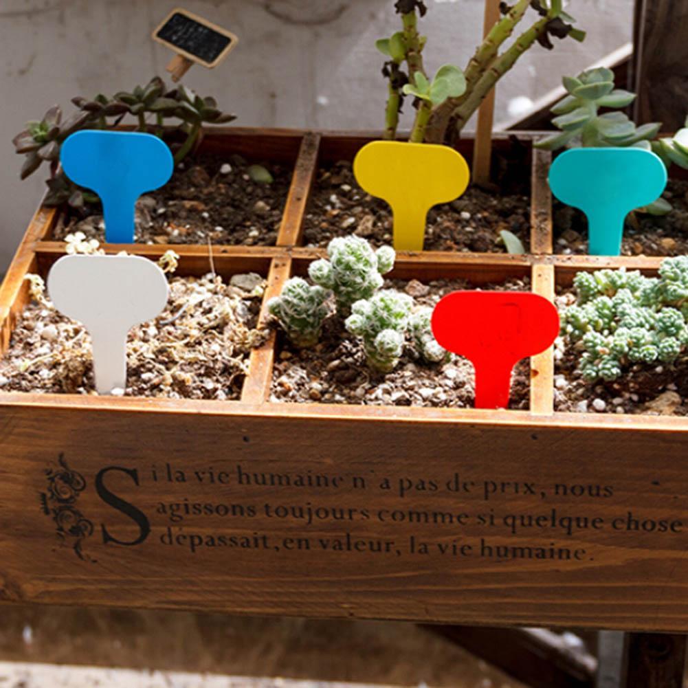 Aliexpress.com : Buy Useful 100 Pcs T type Sticks Tags Plastic ...