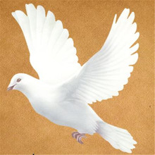 T shirt Women patch 17cm peace dove iron on patches for clothing transfer printing clothes for girls DIY street icon stickers rachel dove the flower shop on foxley street