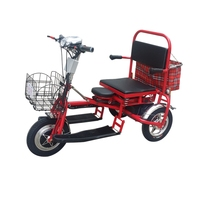 Electric Trike Scooter Foldable Lithium Protable Mobility Three Wheel Citycoco Motorcycle for Elderly Disabled Tricycle Scooter