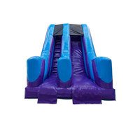 inflatable land slide inflatable single tunnel slide inflatable dry slide with customized size and design for sale