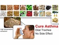 Asthma Disease Cure! Traditional Chinese Medicine Extraction Powder with Modern Technology Purification, Treat Asthma Safely