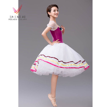 2018 New Arrival Professional Ballet Tutu Girls Performance Dance Costumes Adult Classical Ballet Costumes Dancing Dress  B-6321