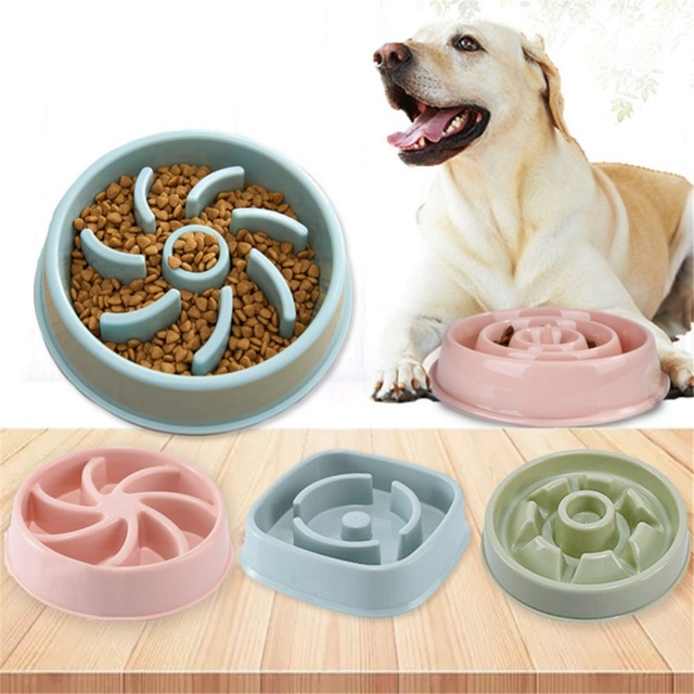Slow Pet Feeder