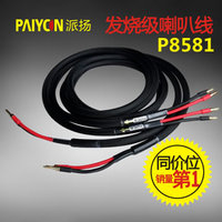 Paiyon P8581 Lautsprecher Kabel HIFI EXQUIS Bananenstecker 2 5 Meter