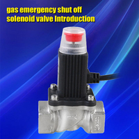 Free Shipping LPG Nutural Gas Emergency Shut Off Solenoid Valve For Home Security Alarm System