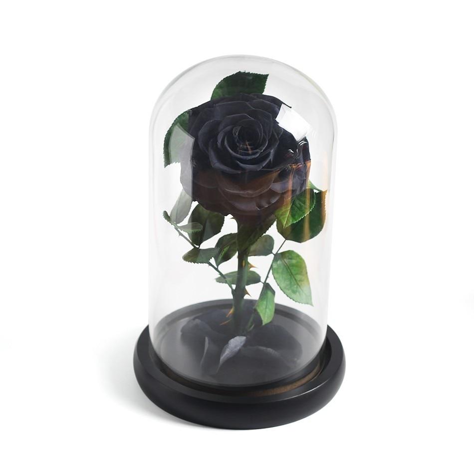 Красавица и Чудовище красная роза в стеклянном куполе на розовой гостиной спальни украшения стола подарки на день Св. Валентина подарки на день рождения - Цвет: black