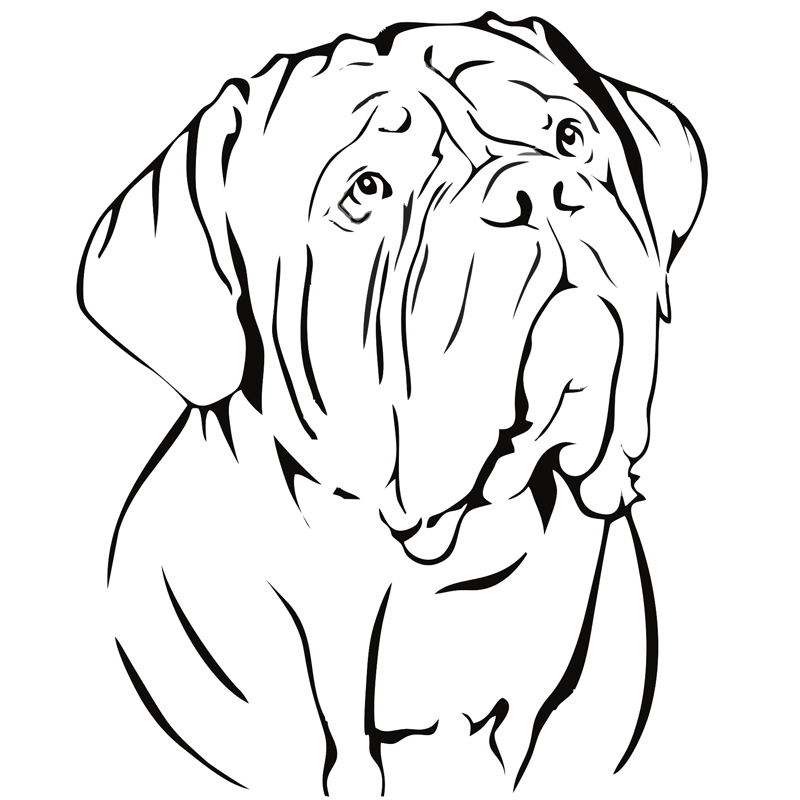 bordo coloring pages - photo#13