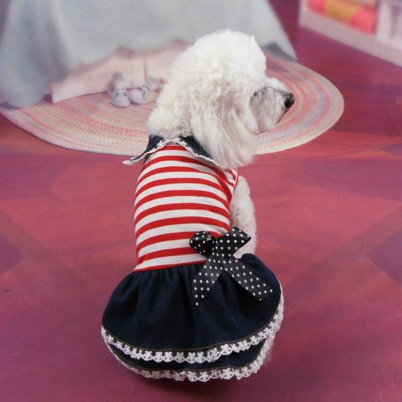 Bonito Vestido De Partido Del Perro Fotos - Colección del Vestido de ...