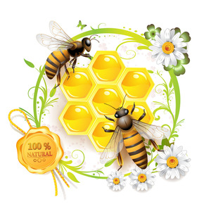 Image 5 - 42 Pairs = 1Lot Ce Gekwalificeerde Rook Gratis Natuurlijke Bijenwas Oorkaarsen Oor Waxen Kegels Zonder Pesticide Residu Voor oorkaarsen
