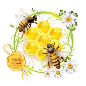Image 5 - 42 pairs = 1lot CE qualifizierte rauch freies natürliche bienenwachs ohr kerzen ohr wachsen kegel ohne pestizid rückstände für ohrkerzen