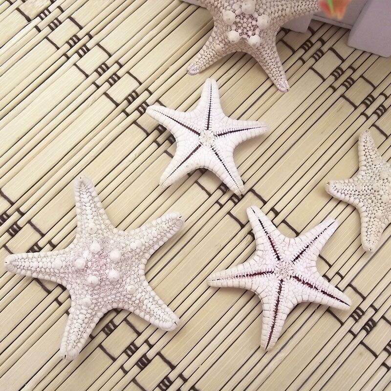 AIBEI-Mediterranean Sea Natural White Steamed bread Starfish 1PC Photo props Wall stickers Home Decoration Gift Crafts