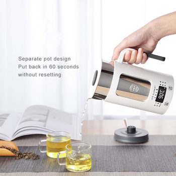 100-240V Multi-function Electric Kettle Stainless Steel Health Preserving Teapot Water Heating Cup Boiling Water Kettle 600ML