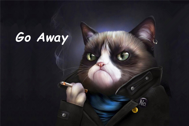 Aliexpresscom buy custom grumpy cat doormat angry kitty for Can you train a cat to go outside for bathroom