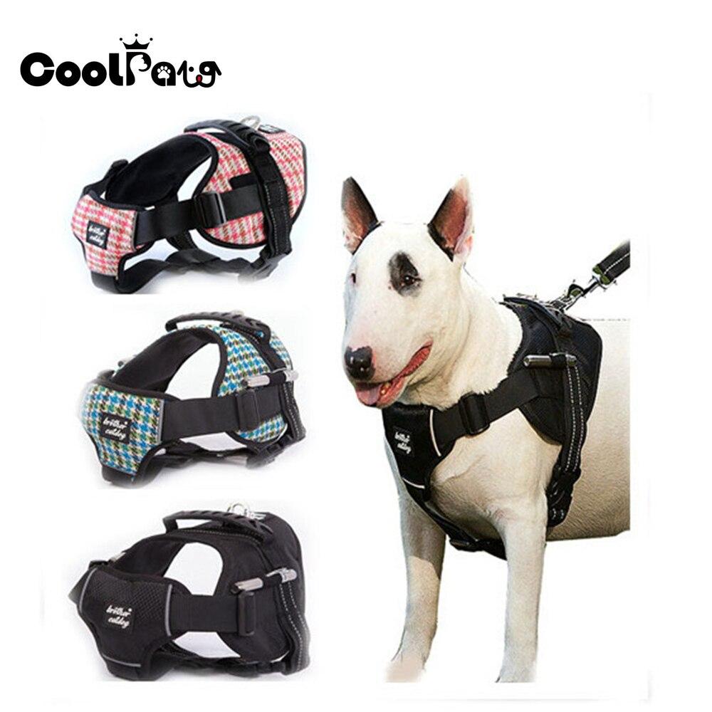 Buy Service Dog In Training Vest