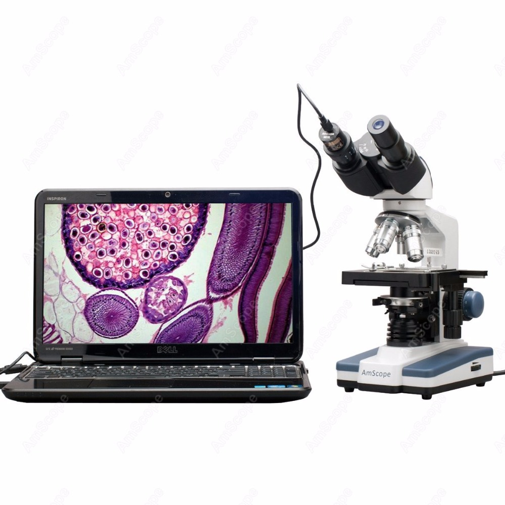 Binocular Compound Microscope  AmScope Supplies 40X 2500X LED Digital Binocular Compound Microscope w 3D Stage +1.3MP USB Camera Microscopes     - title=