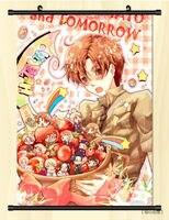 Home Decor Japan Anime Axis Power Hetalia Cosplay Wall Poster Scroll P