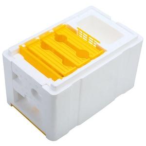 Image 4 - Caja de polinización King Box de colmena de abeja, marcos de espuma, Kit de herramientas de Apicultura