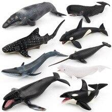Разнообразные Акула КИТ морской жизни животных модель фигурки игрушечные лошадки пластик моделирование убийца синий кит подарок для детей