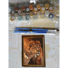 Frameless The Lion Animal DIY Painting By Numbers Kits Coloring Oil Painting On Canvas