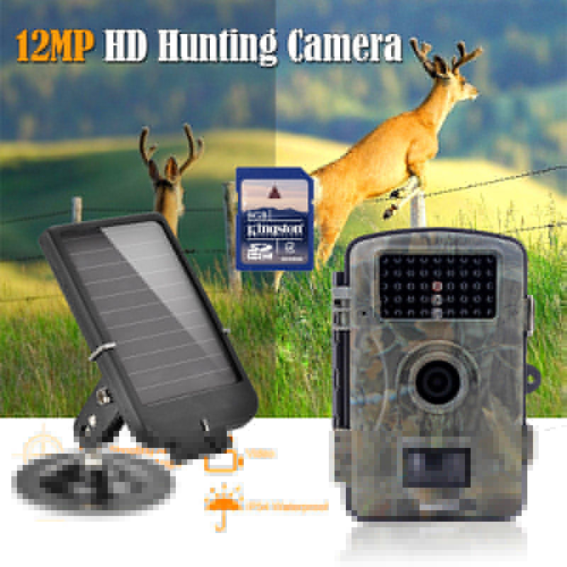 Free shipping RD1001 8GB 720P Wildlife Hunting font b Camera b font Infrared Video font b