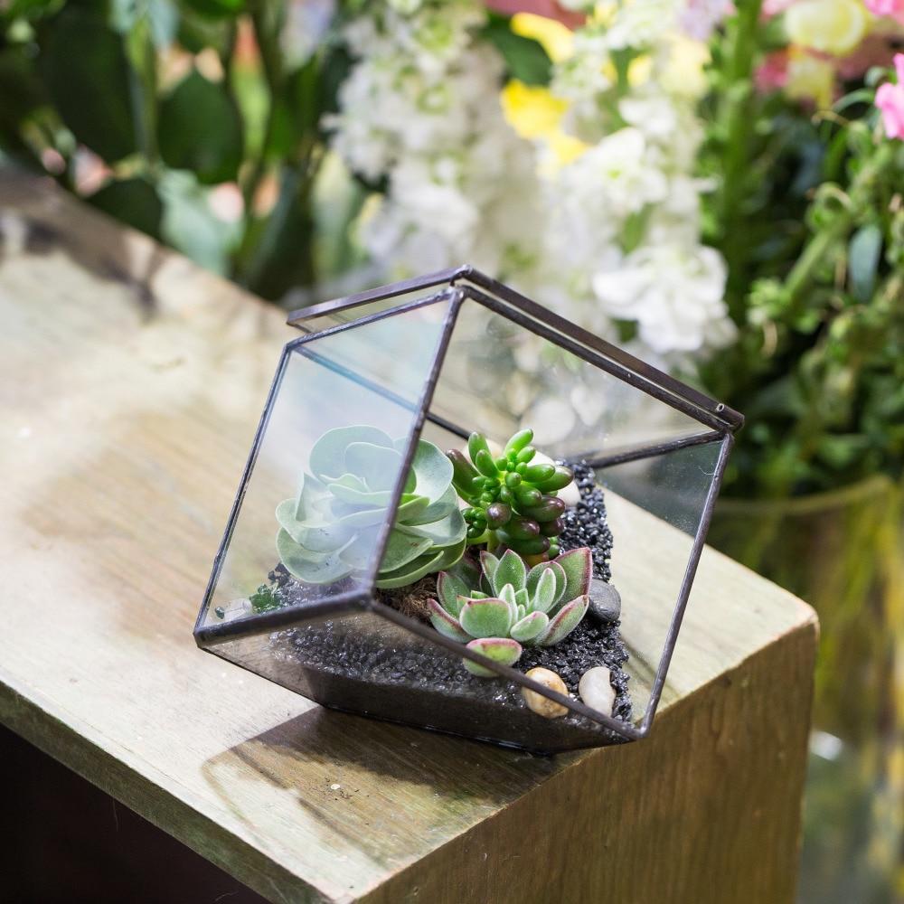 Փոքր DIY երկրաչափական խորանարդի ապակե - Այգու պարագաներ - Լուսանկար 3