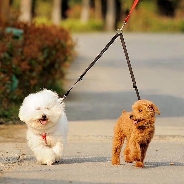 ללכת 2 שני כלבים מצמד רצועה כפולה תאום עופרת הליכה רצועה