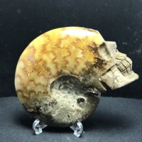 Natural stone and mineral snail fossils slice carved skull, feng shui ornaments, home decoration gifts