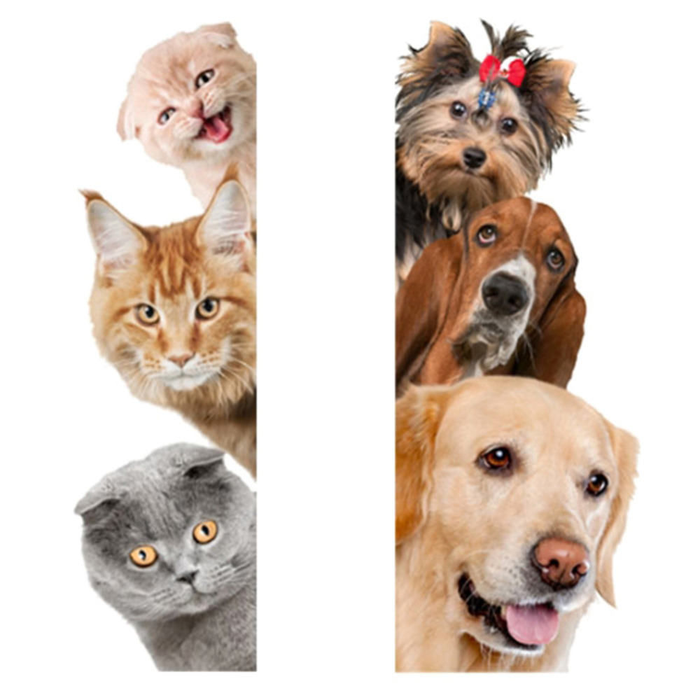 Cute Funny 3D Cat Dog Door Wall Stickers Removable Sitting Room Porch Bedroom Wall Decals Animals Mural Art Wallpaper Сумка