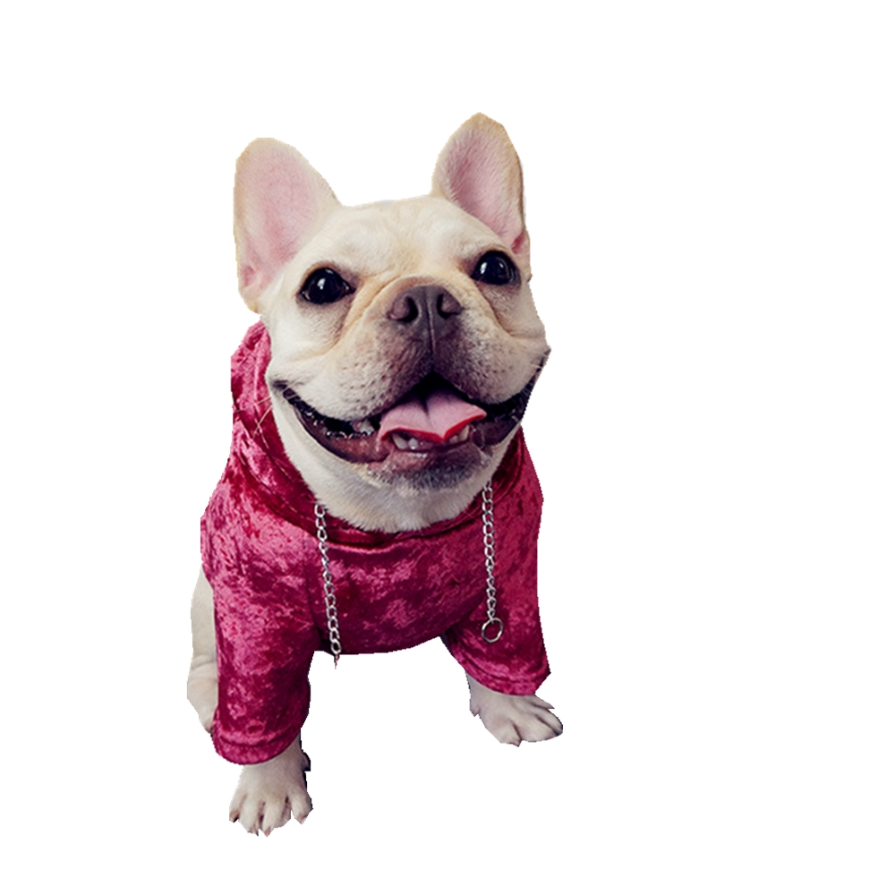 Pug Clothes Chihuahua French Bulldog Coats Jackets Winter Dogs Outfit Yorkshire Terrier Halloween Costume Dog Buldog Francuski