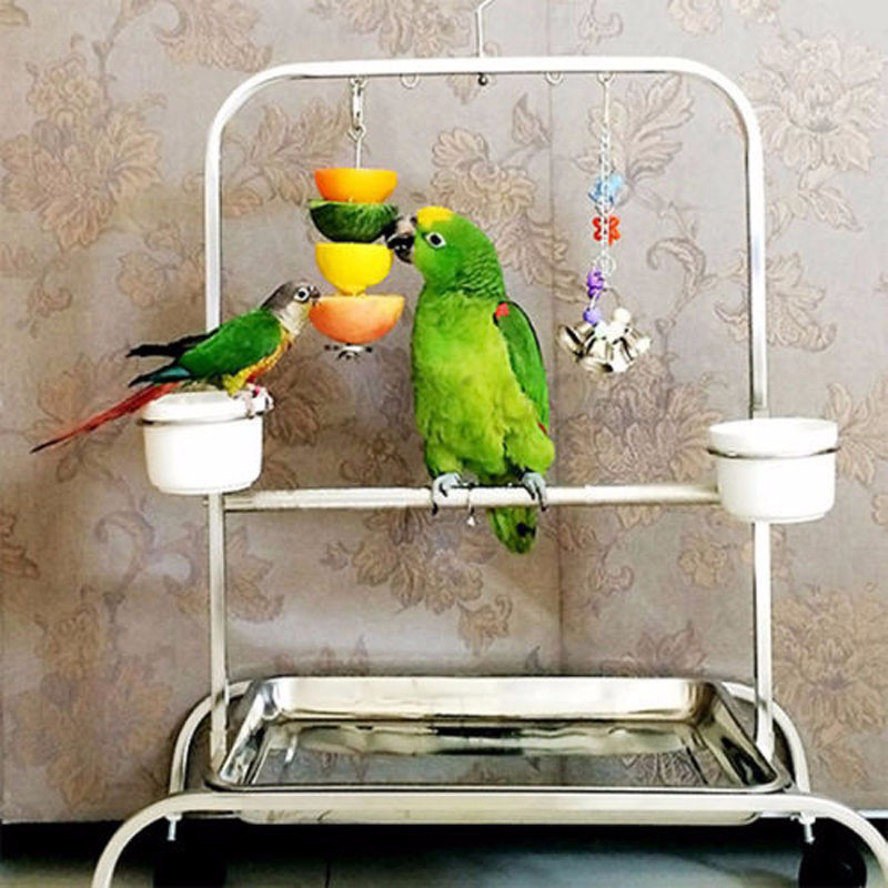 Birds Foraging Toys for Parrot