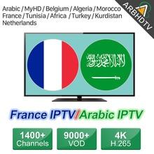 Bélgica França Assinatura IPTV IPTV Francês Árabe IP TV Código Marrocos Tunísia Turquia IPTV Holandês para Android Livre Teste IP TV
