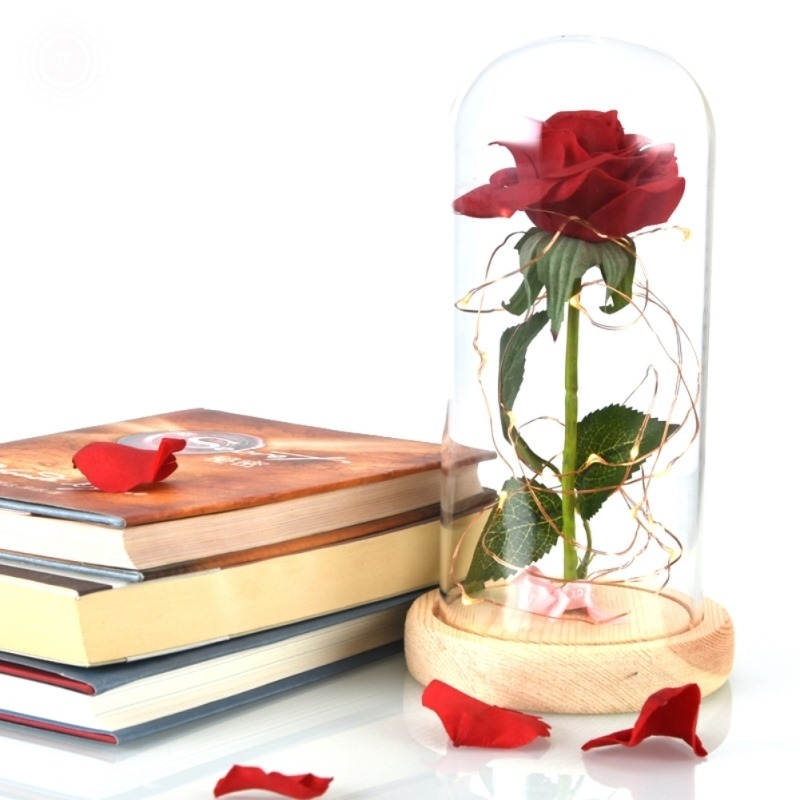 Dome on a Wooden Base For Valentines Gifts Beauty And The Beast Red Rose in a Clear Glass