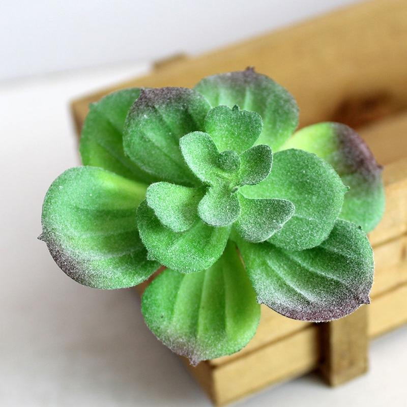 Artificial de plástico suculentas Cactus Echeveria flor casa - Para fiestas y celebraciones
