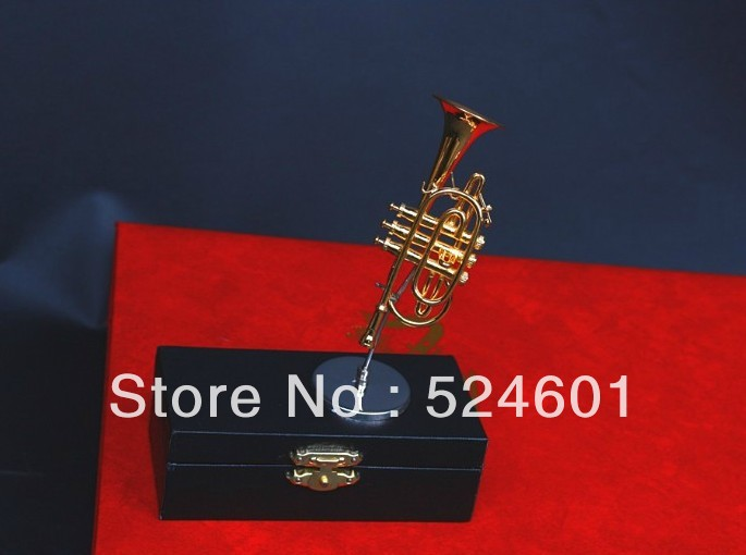 Factory direct Nice things Mini cornet himself Child Gift & case