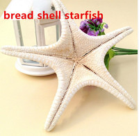 HappyKiss 5pcs / lots Natural crafts white bread sea shell starfish, fashion home decorative handicrafts free shipping sea star